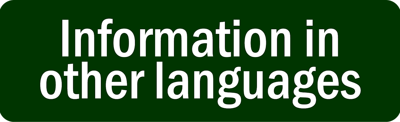 Information in other languages